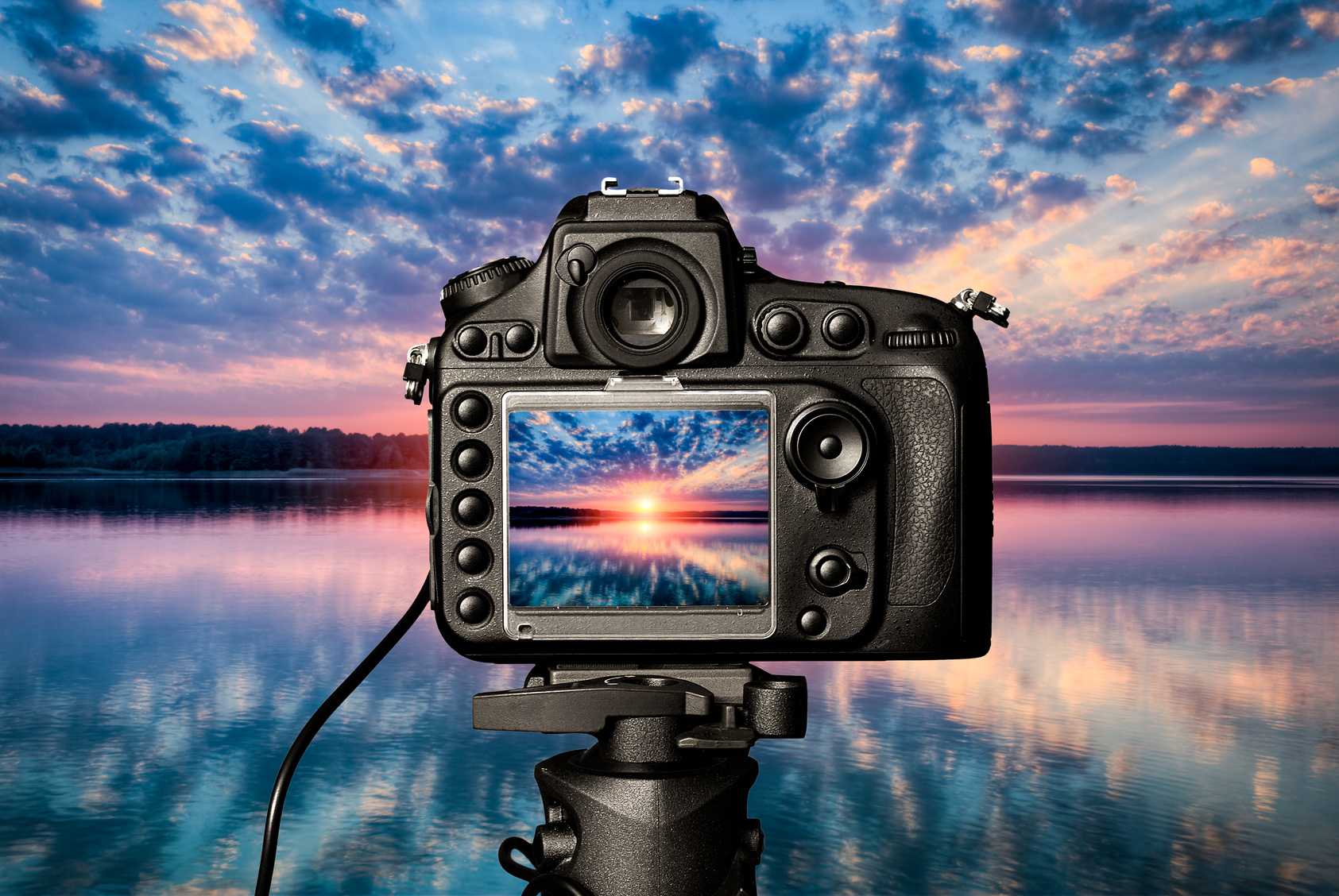 Learn How To Make The Most Out Of Photography